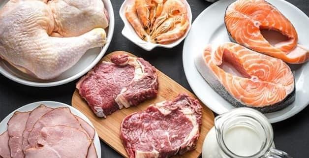 Afbeelding met dierlijke producten zoals; zalm, garnalen, melk en kip.